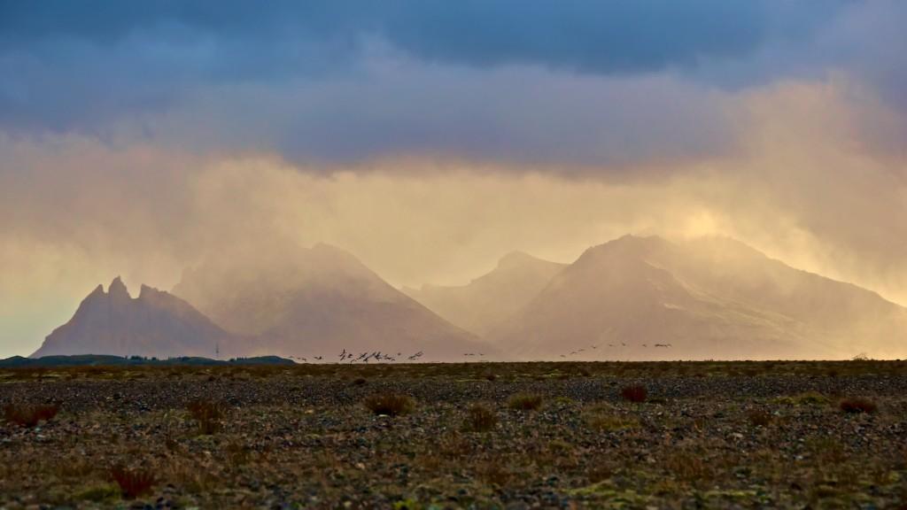 ASP_Iceland_Misty